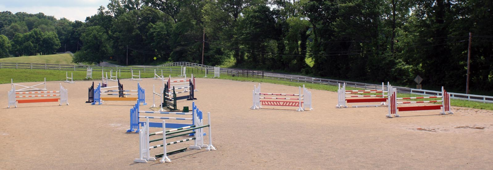 horse jumps in ring