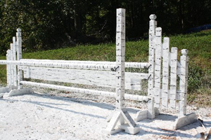 Birch Look Horse Jump | Horse Jumps for Sale