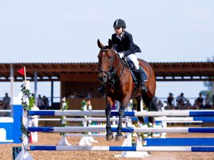 Used Horse Jumps | OldDominionJumps.com