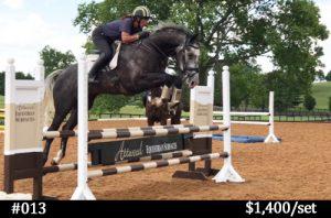 schooling horse jumps