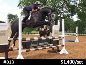 Atwood horse jump